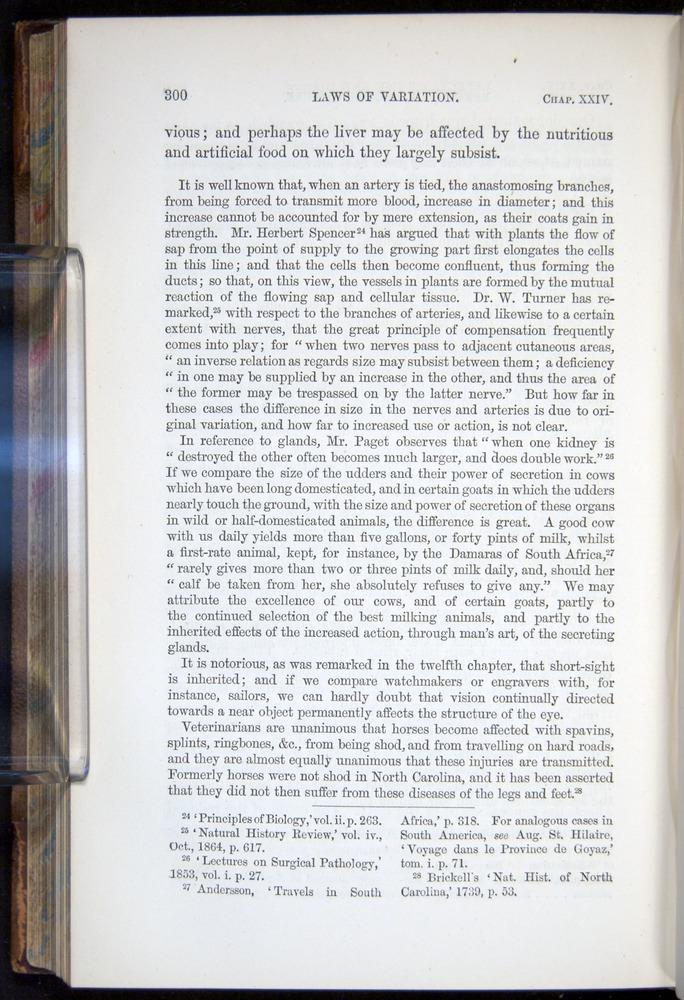 Image of Darwin-F878.2-1868-00300