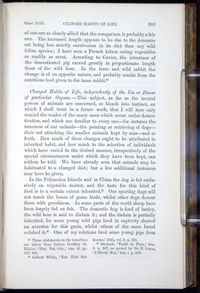 Image of Darwin-F878.2-1868-00303