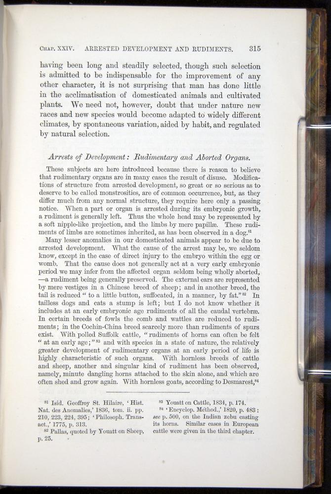 Image of Darwin-F878.2-1868-00315