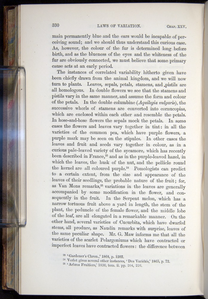 Image of Darwin-F878.2-1868-00330