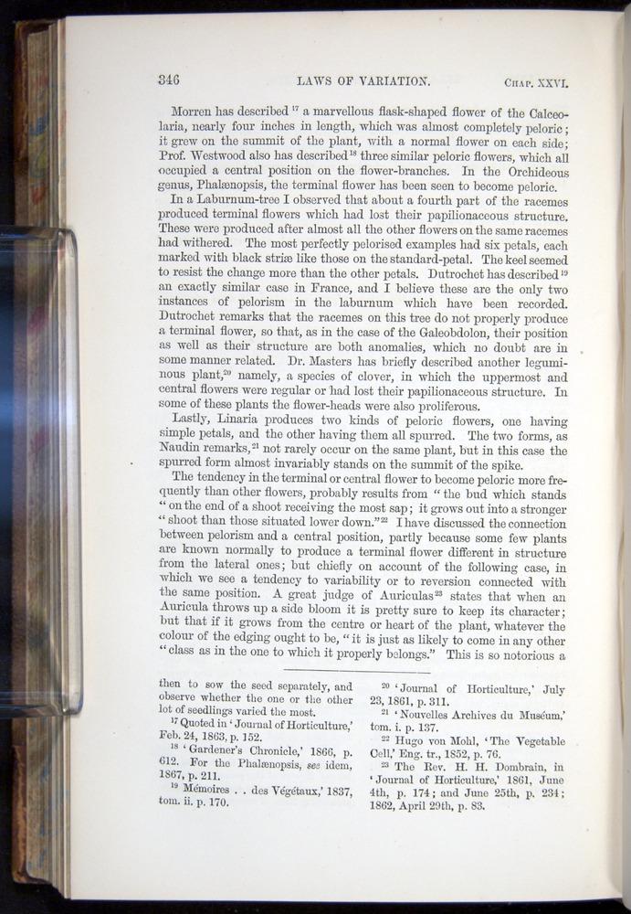 Image of Darwin-F878.2-1868-00346