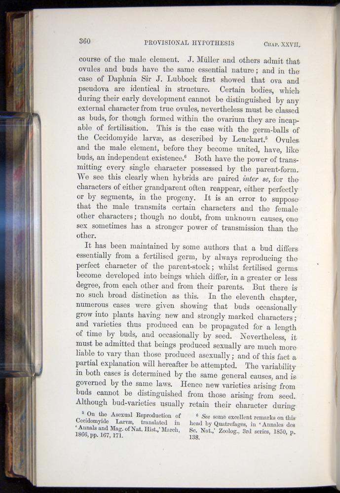 Image of Darwin-F878.2-1868-00360