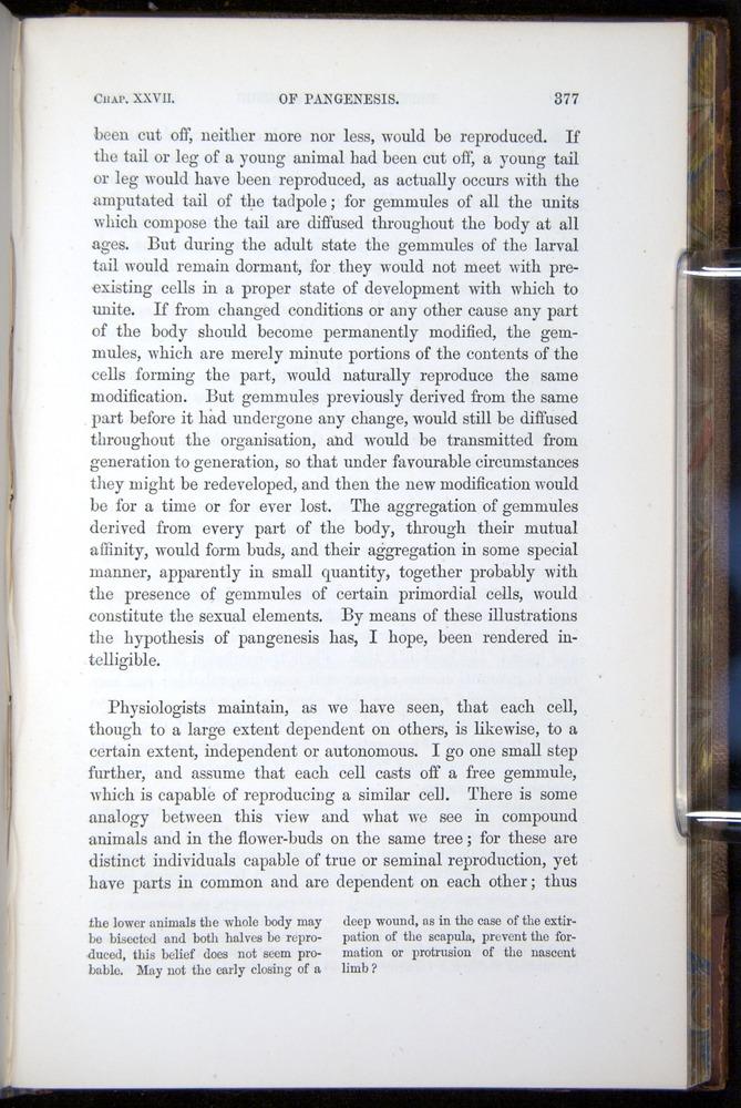 Image of Darwin-F878.2-1868-00377
