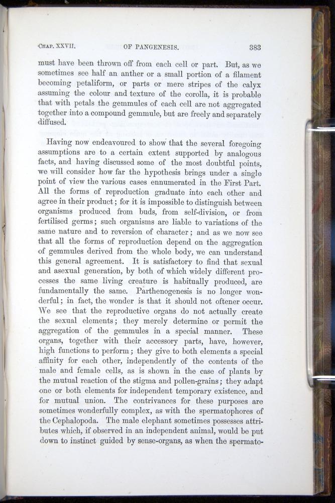 Image of Darwin-F878.2-1868-00383