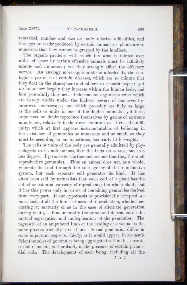 Image of Darwin-F878.2-1868-00403