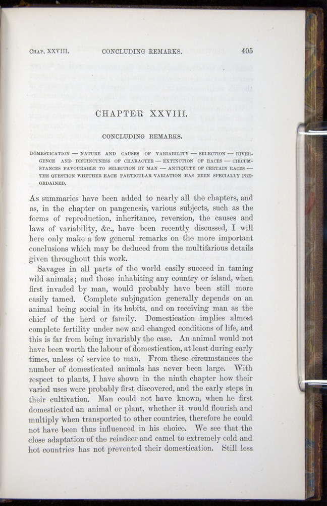 Image of Darwin-F878.2-1868-00405