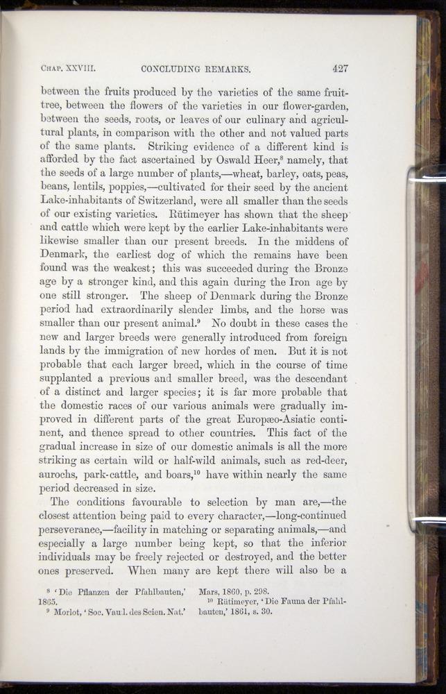 Image of Darwin-F878.2-1868-00427