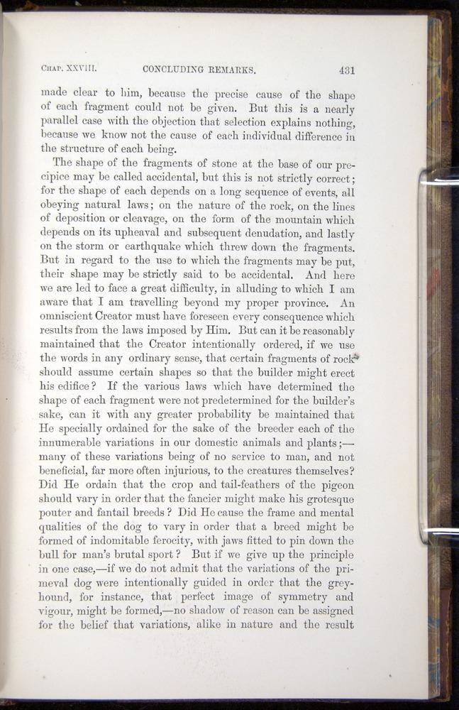 Image of Darwin-F878.2-1868-00431