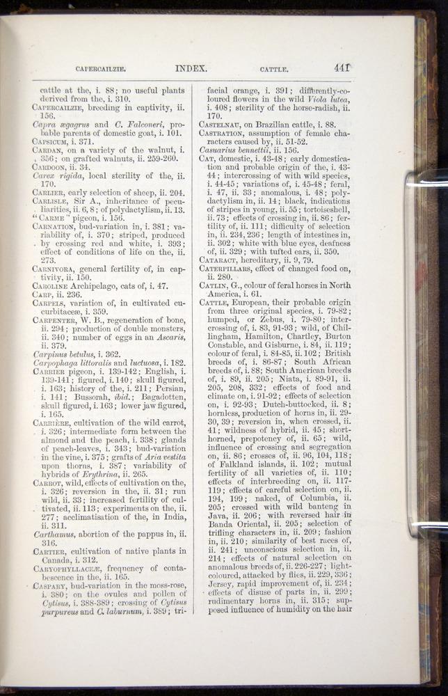 Image of Darwin-F878.2-1868-00441