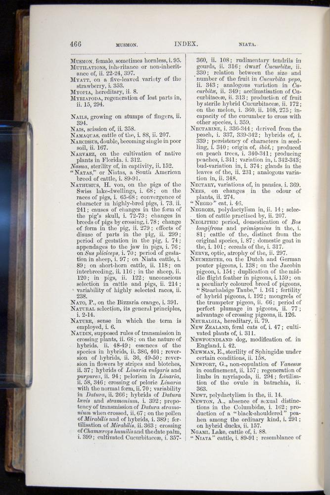 Image of Darwin-F878.2-1868-00466