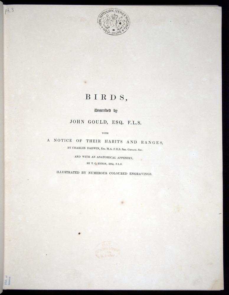 Image of Darwin-F8.2-1838-00000-z01