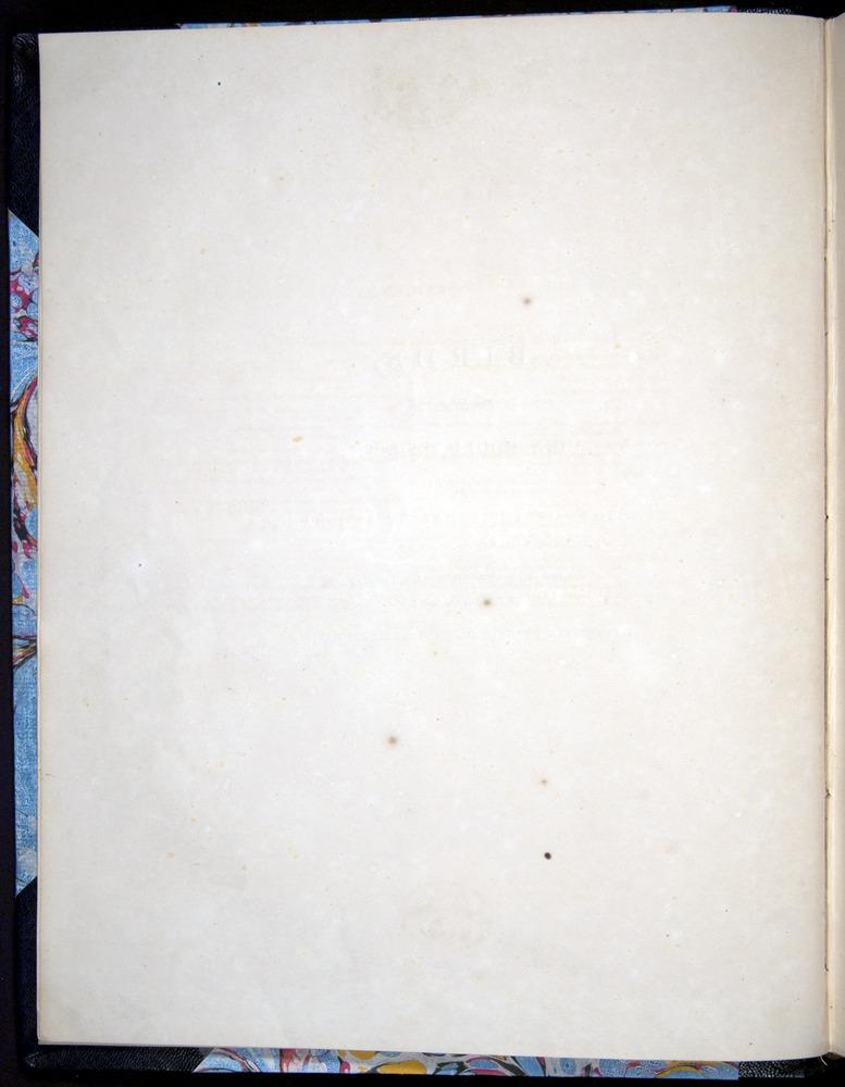 Image of Darwin-F8.2-1838-00000-z02