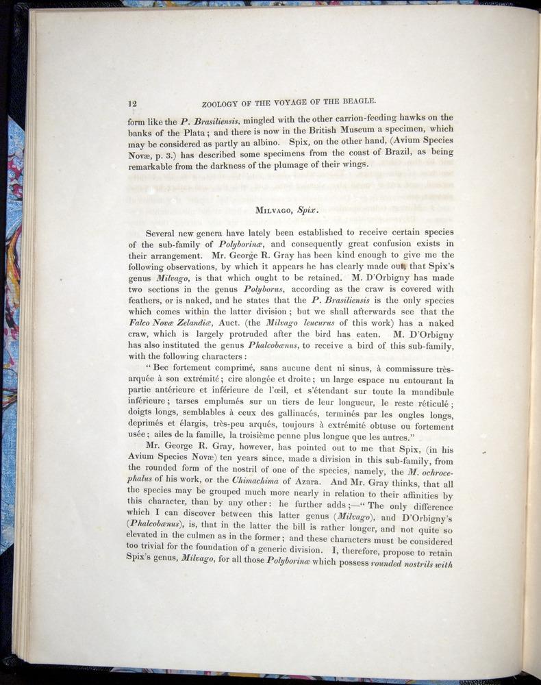 Image of Darwin-F8.2-1838-00012