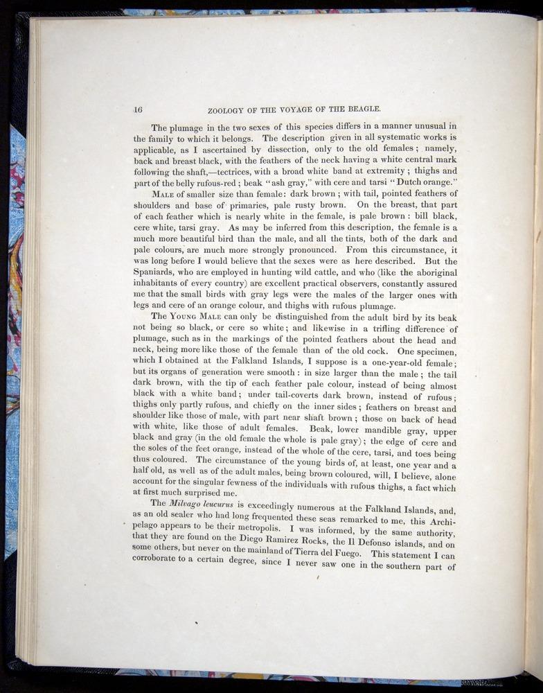 Image of Darwin-F8.2-1838-00016