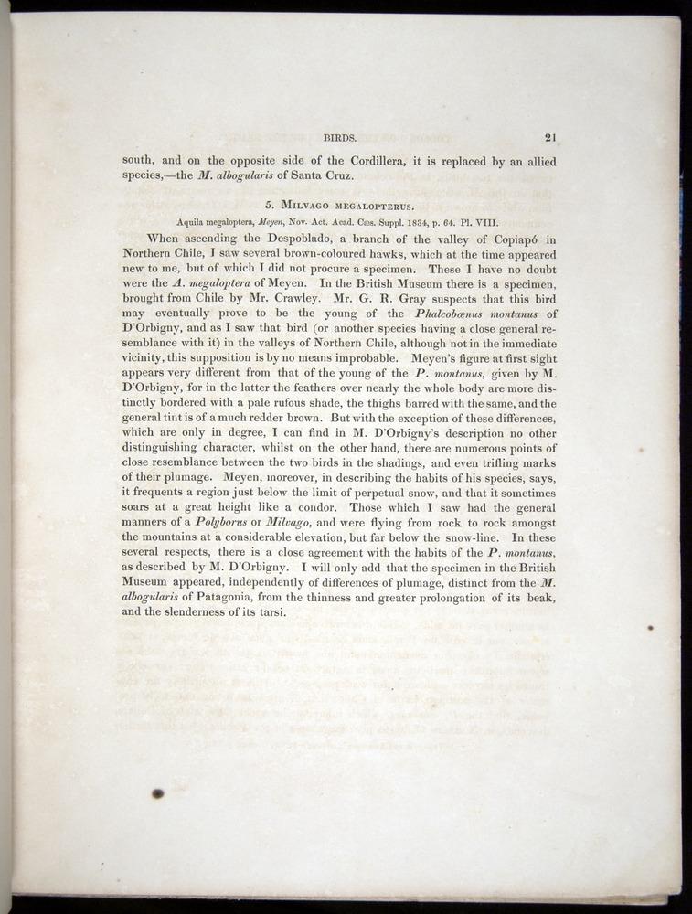 Image of Darwin-F8.2-1838-00021