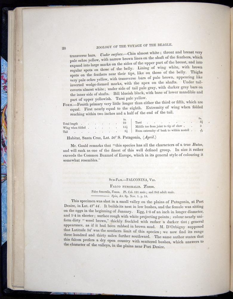 Image of Darwin-F8.2-1838-00028