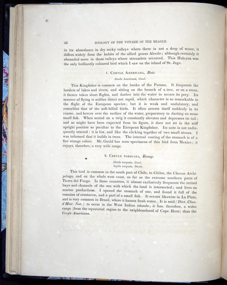 Image of Darwin-F8.2-1838-00042