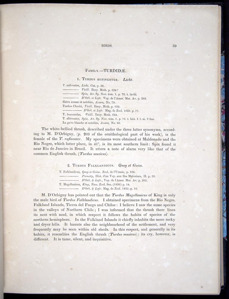 Image of Darwin-F8.2-1838-00059