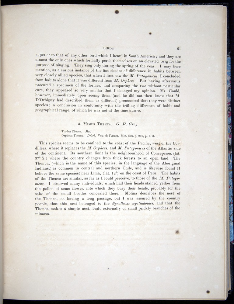 Image of Darwin-F8.2-1838-00061