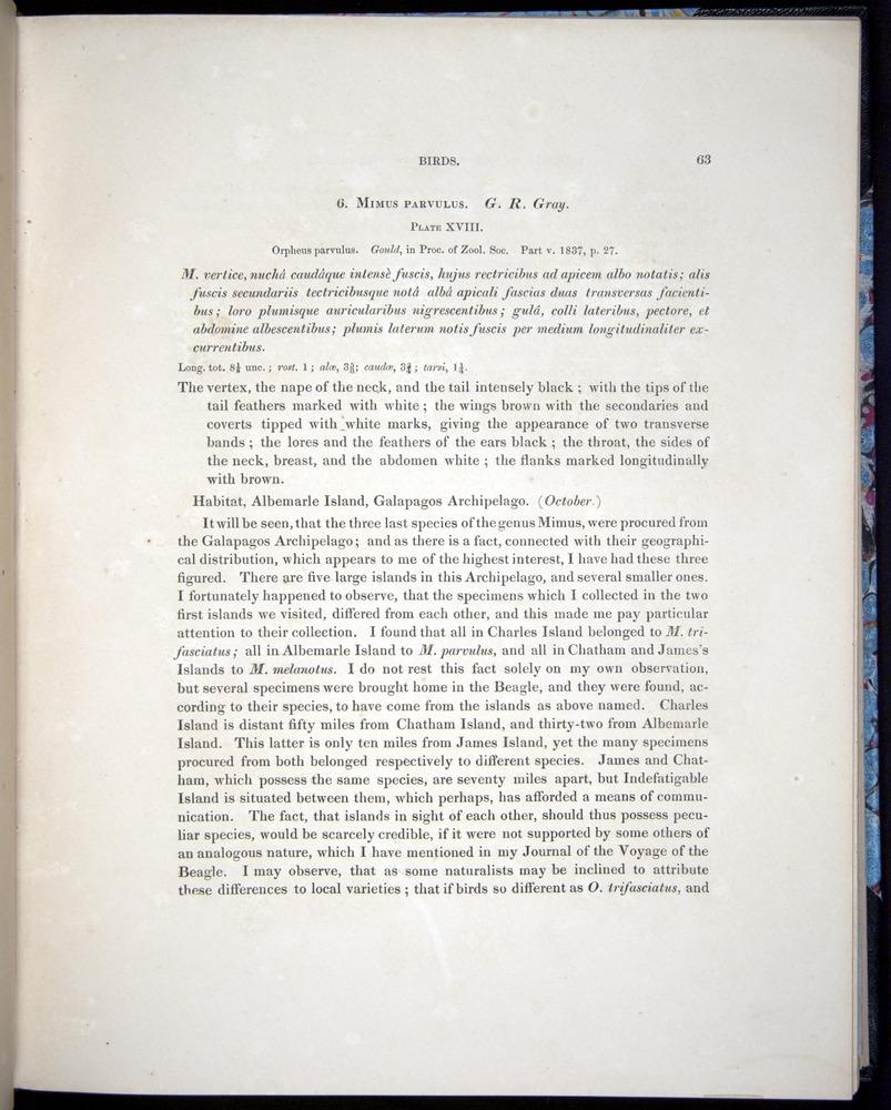 Image of Darwin-F8.2-1838-00063