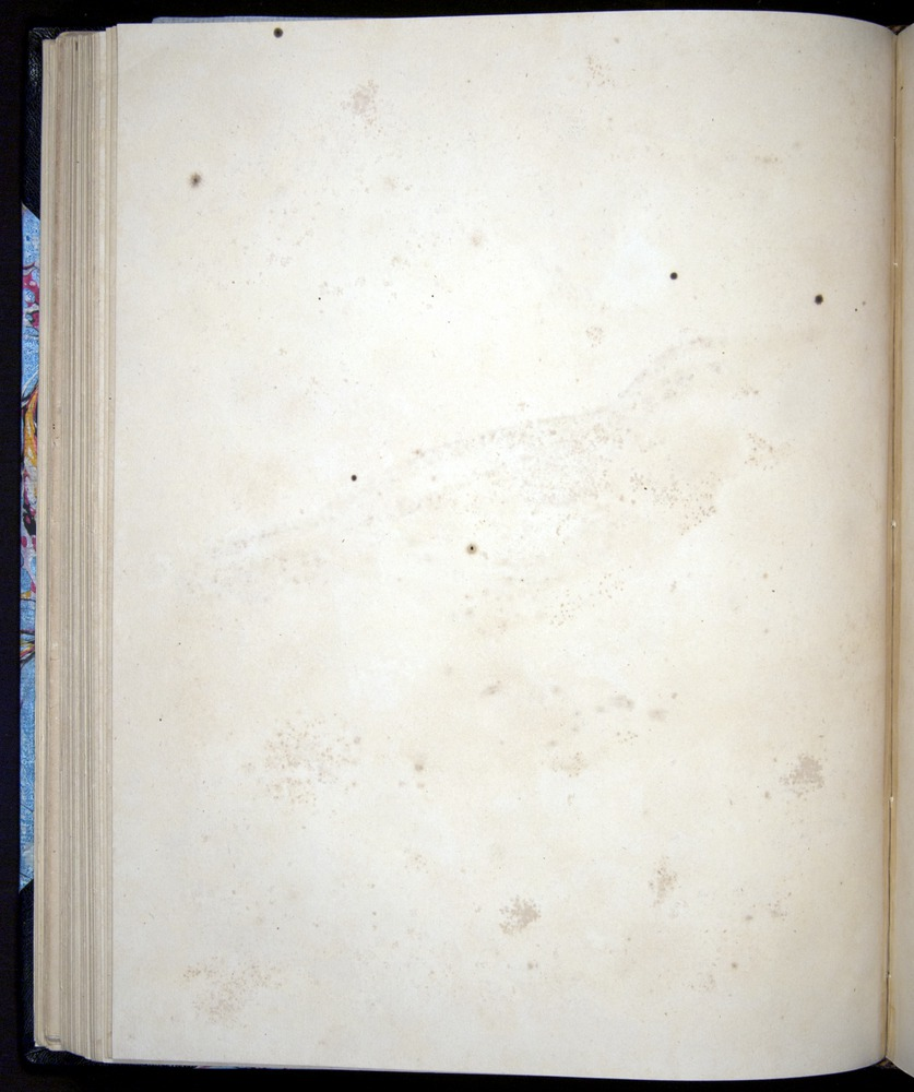 Image of Darwin-F8.2-1838-00068-azf20