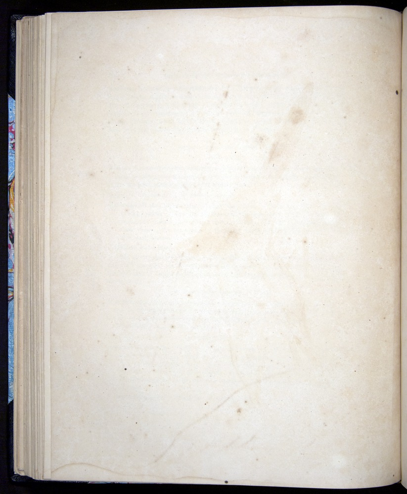 Image of Darwin-F8.2-1838-00078-bf24