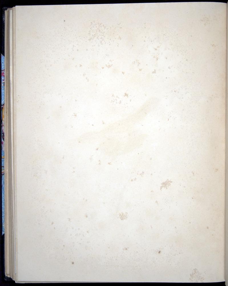 Image of Darwin-F8.2-1838-00090-bzf30