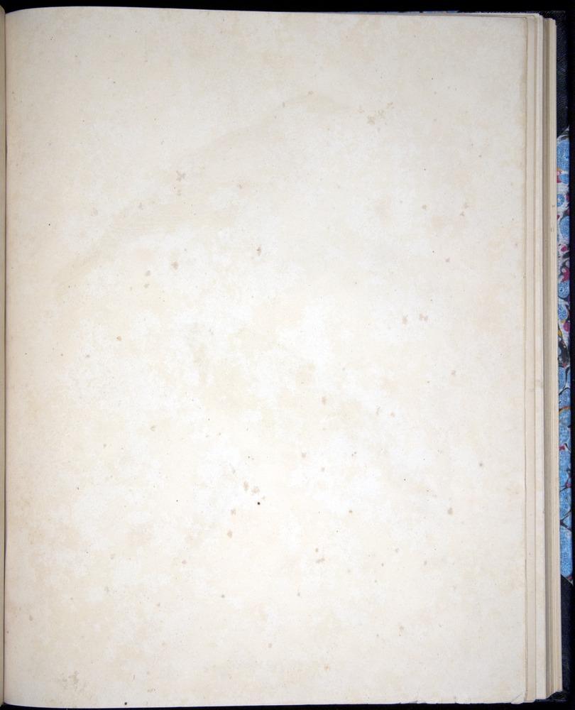 Image of Darwin-F8.2-1838-00090-daf32
