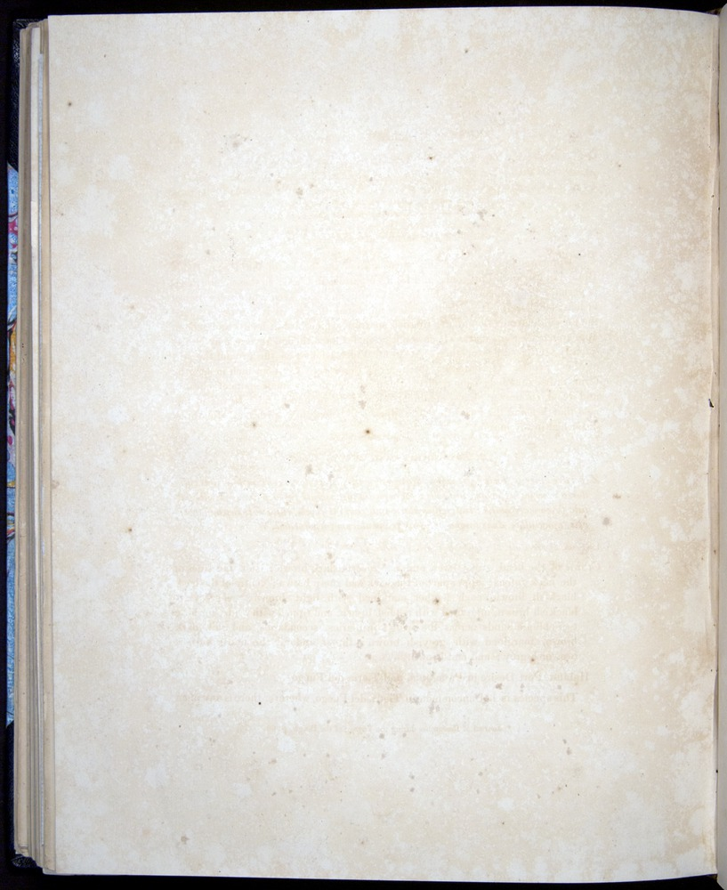 Image of Darwin-F8.2-1838-00092-zf33