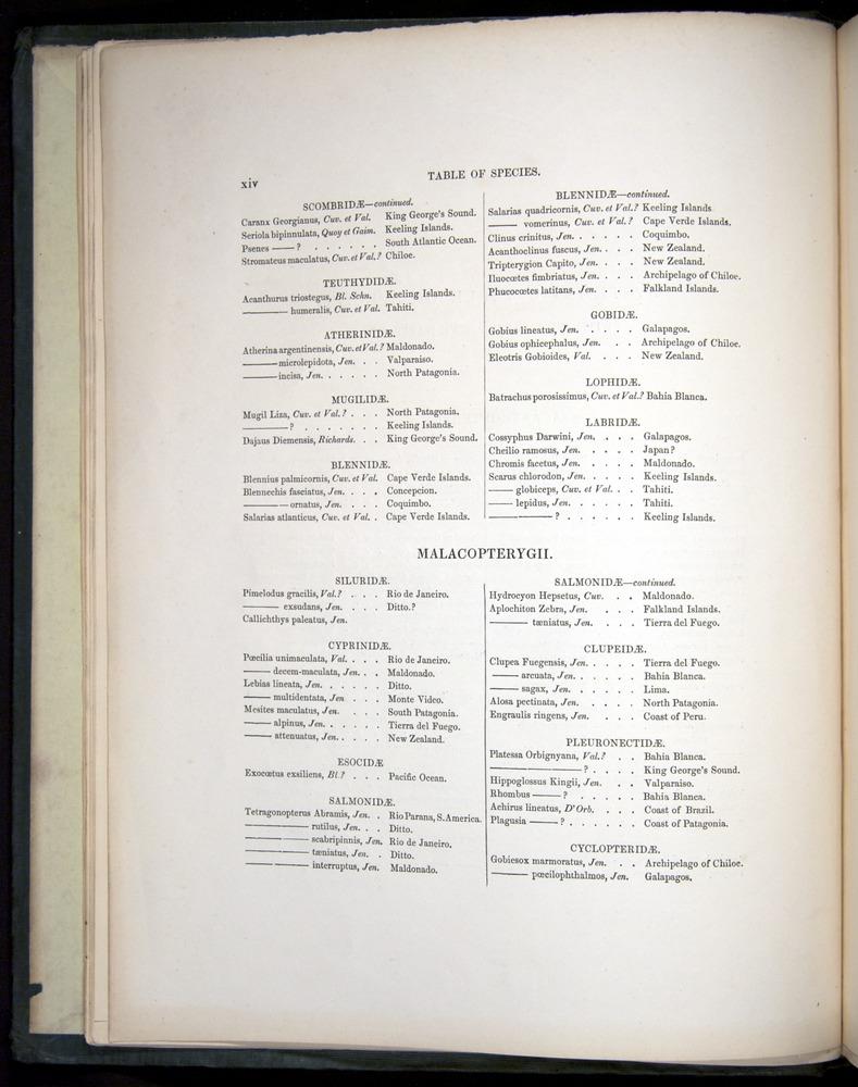 Image of Darwin-F8.3-1838-00000-z12