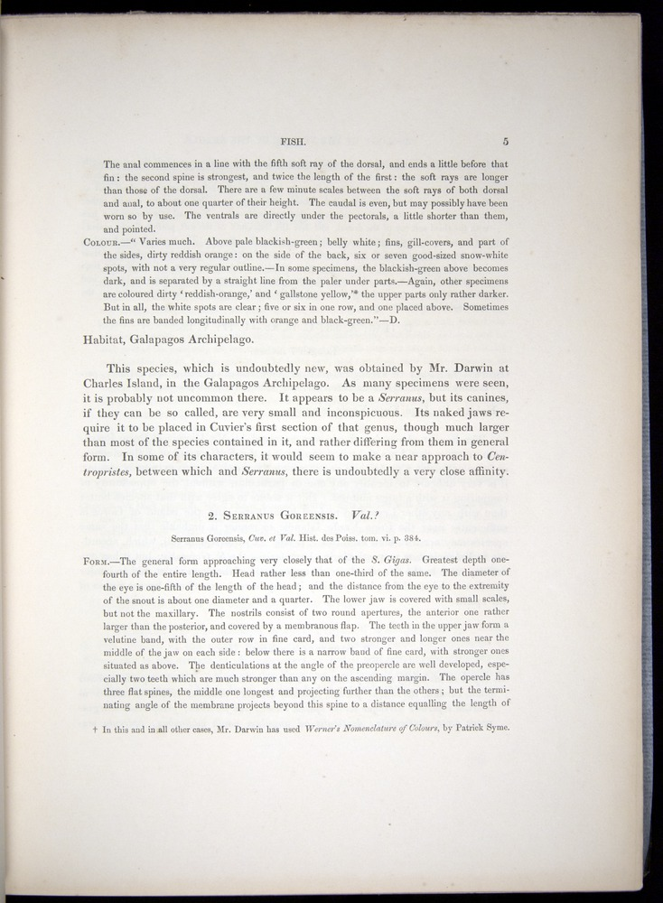 Image of Darwin-F8.3-1838-00005