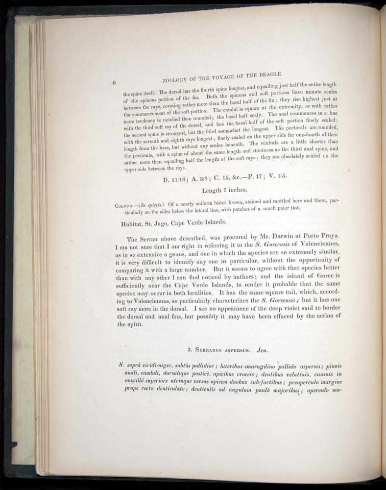 Image of Darwin-F8.3-1838-00006