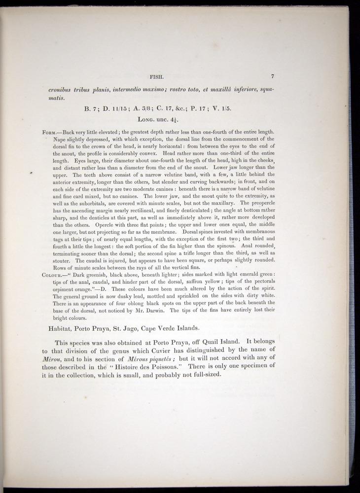 Image of Darwin-F8.3-1838-00007