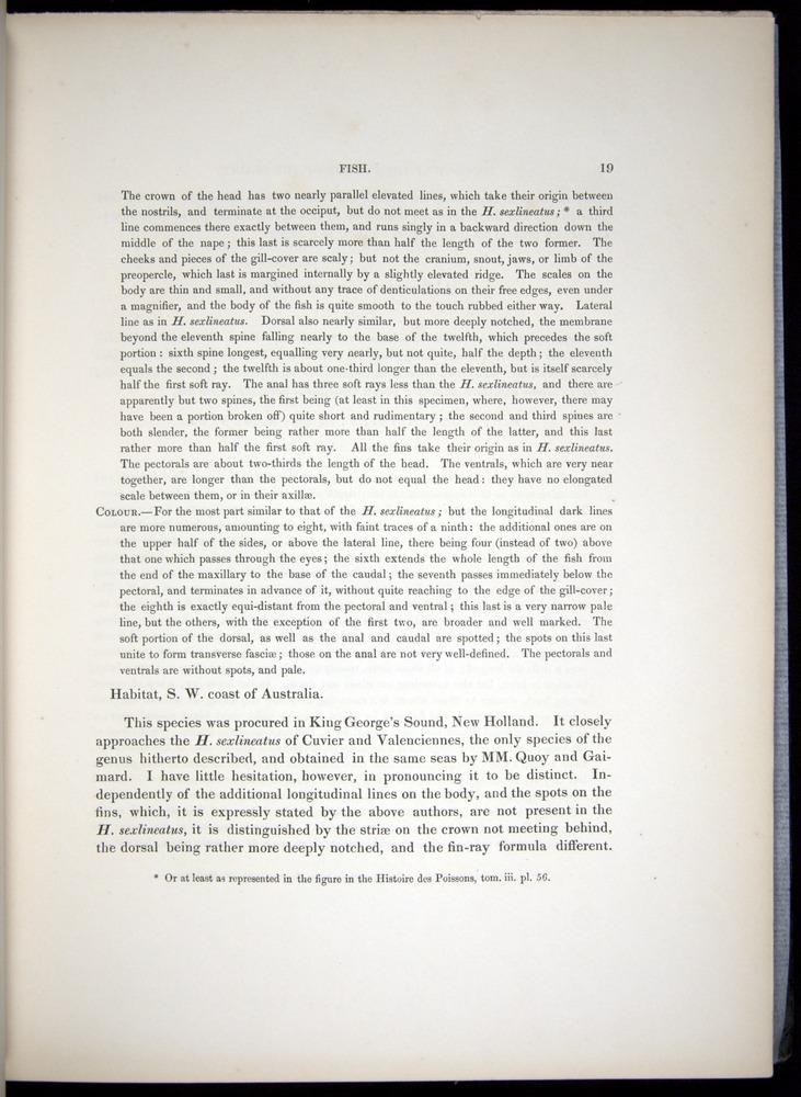 Image of Darwin-F8.3-1838-00019