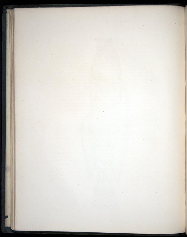 Image of Darwin-F8.3-1838-00020-zf05