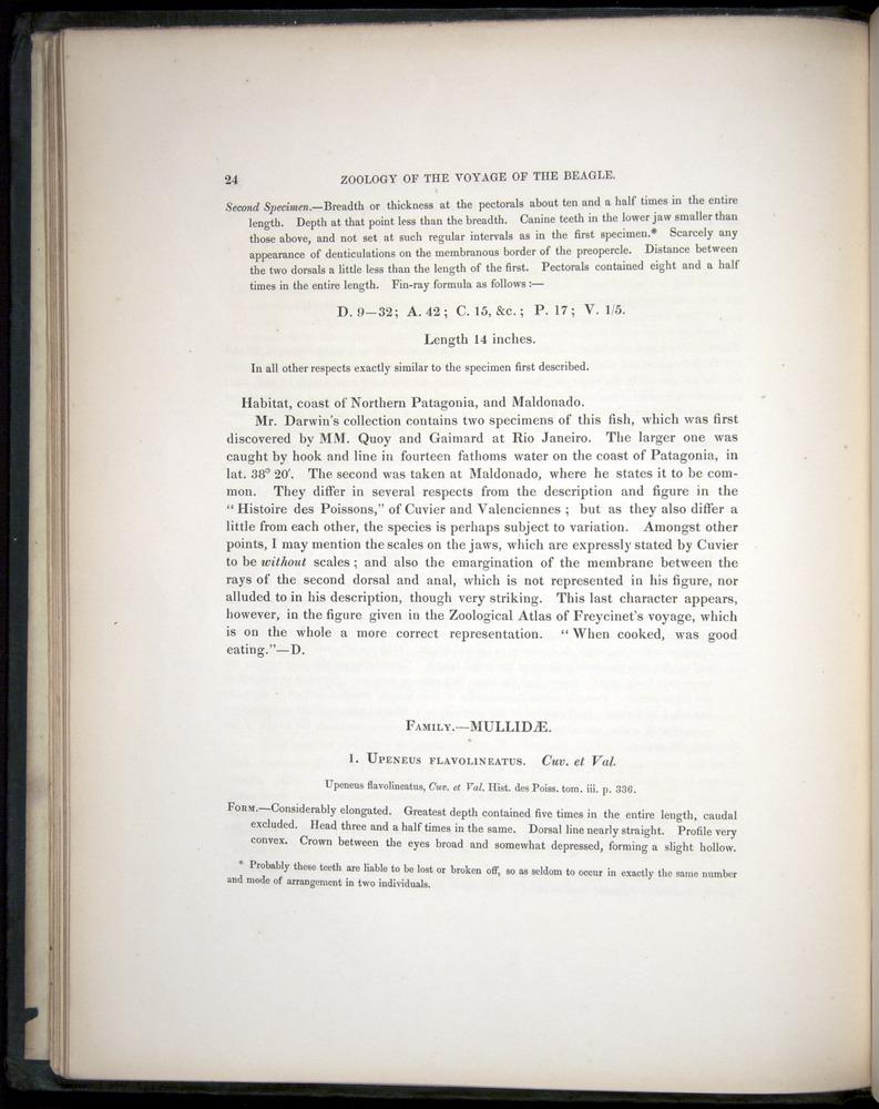 Image of Darwin-F8.3-1838-00024