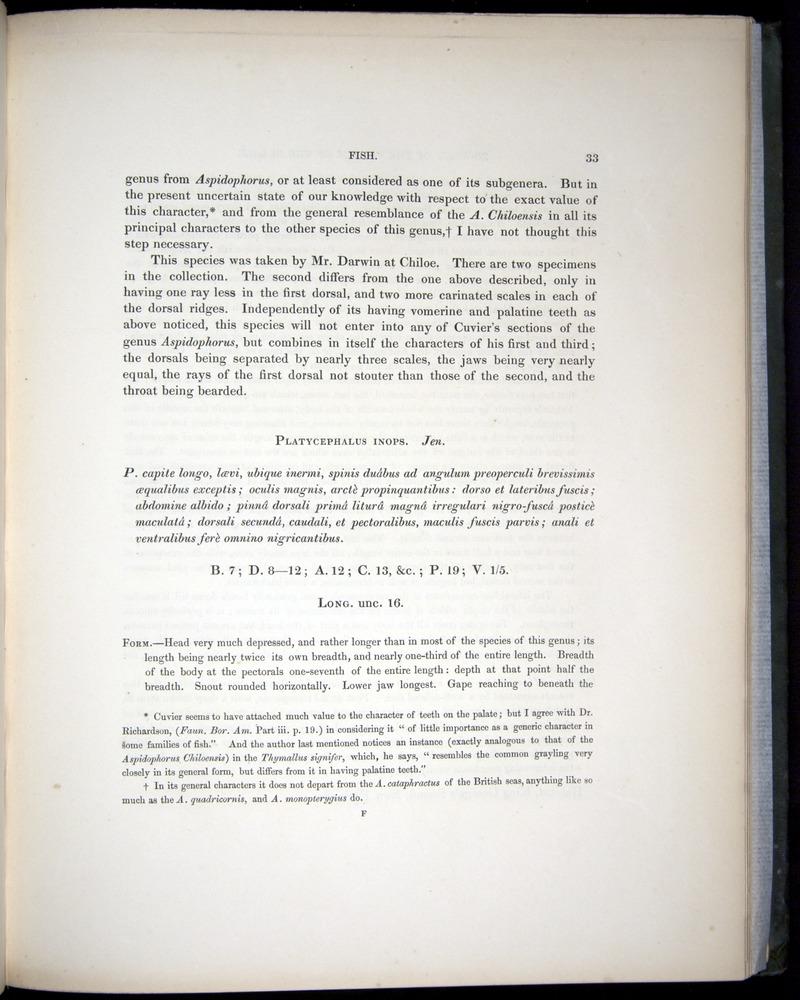 Image of Darwin-F8.3-1838-00033