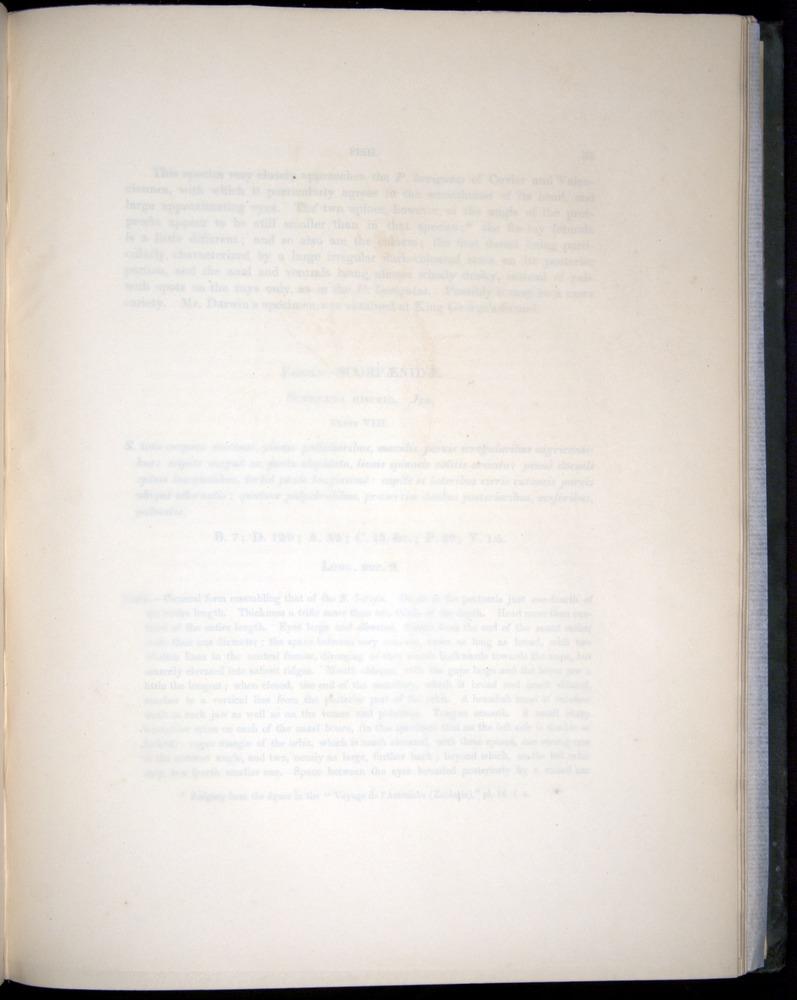 Image of Darwin-F8.3-1838-00034-yf07