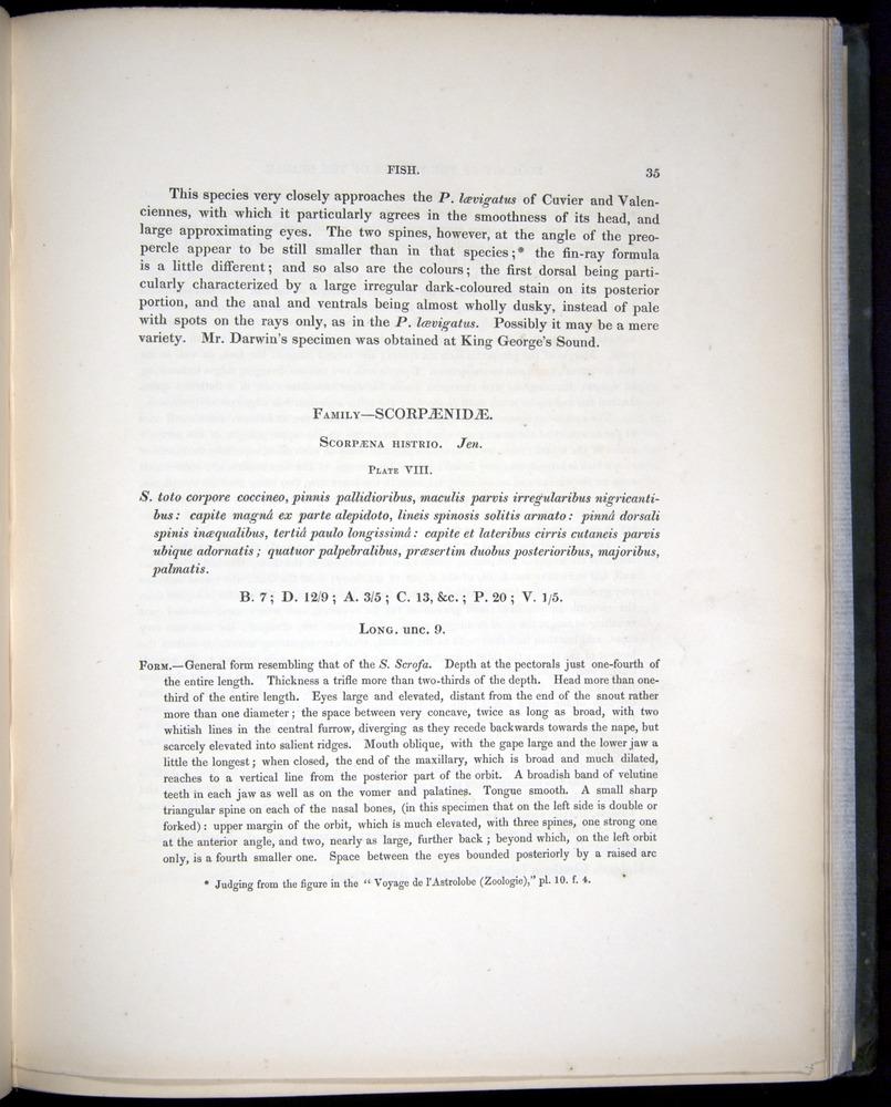 Image of Darwin-F8.3-1838-00035