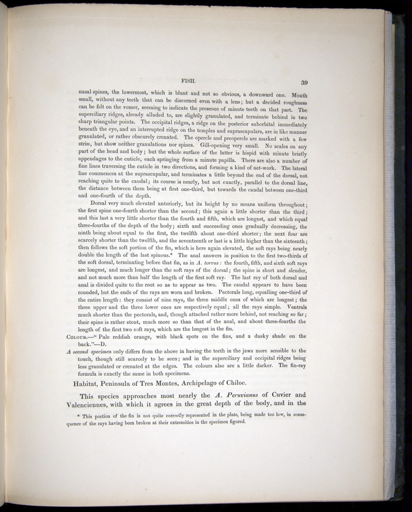Image of Darwin-F8.3-1838-00039
