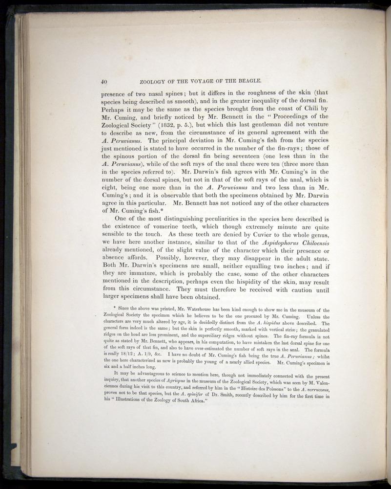 Image of Darwin-F8.3-1838-00040