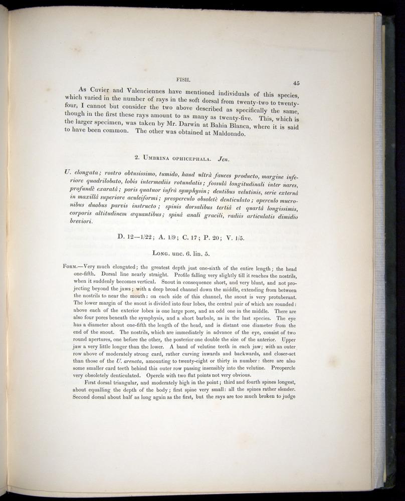 Image of Darwin-F8.3-1838-00045