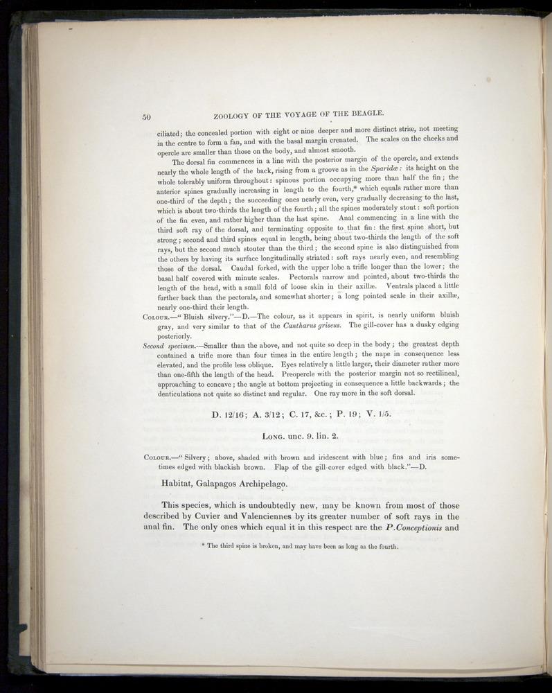 Image of Darwin-F8.3-1838-00050