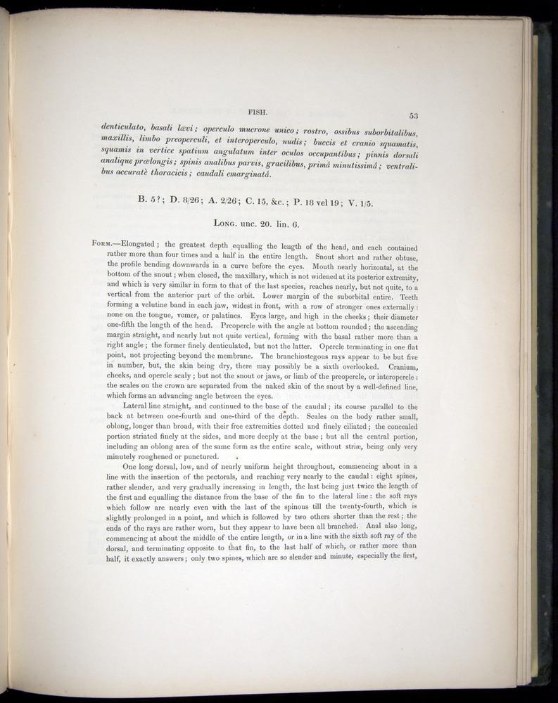 Image of Darwin-F8.3-1838-00053