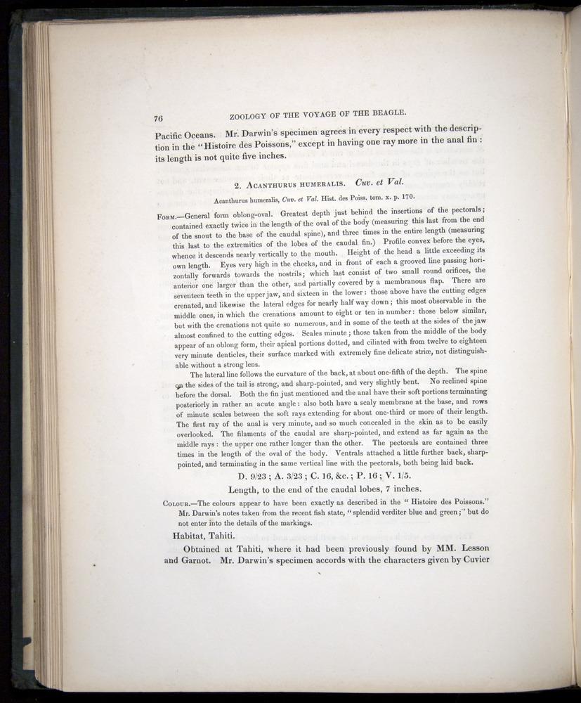 Image of Darwin-F8.3-1838-00076