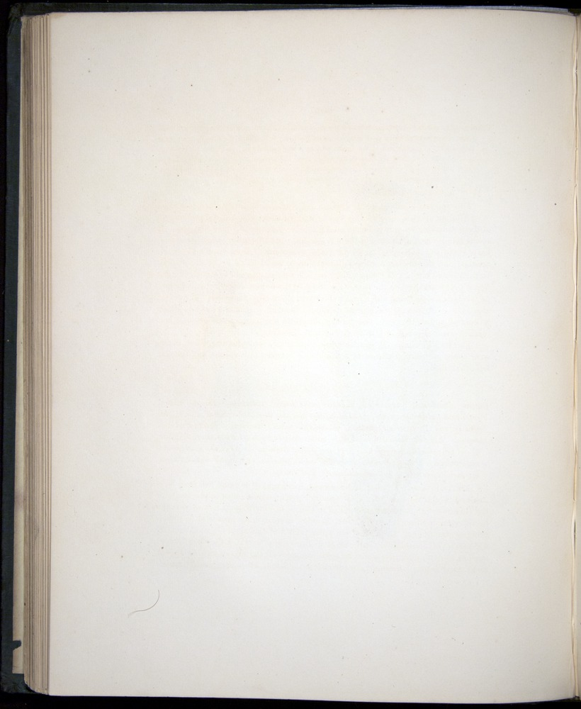 Image of Darwin-F8.3-1838-00090-zf18