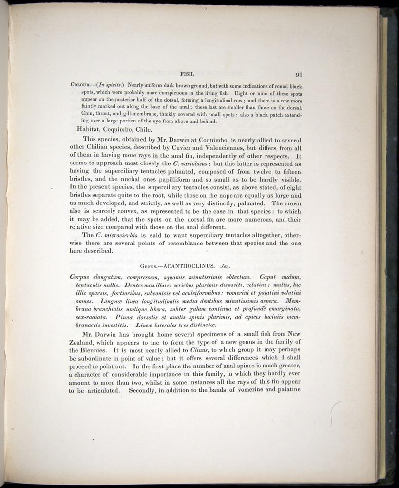 Image of Darwin-F8.3-1838-00091