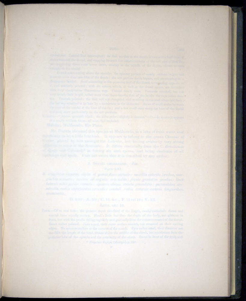 Image of Darwin-F8.3-1838-00104-yf21