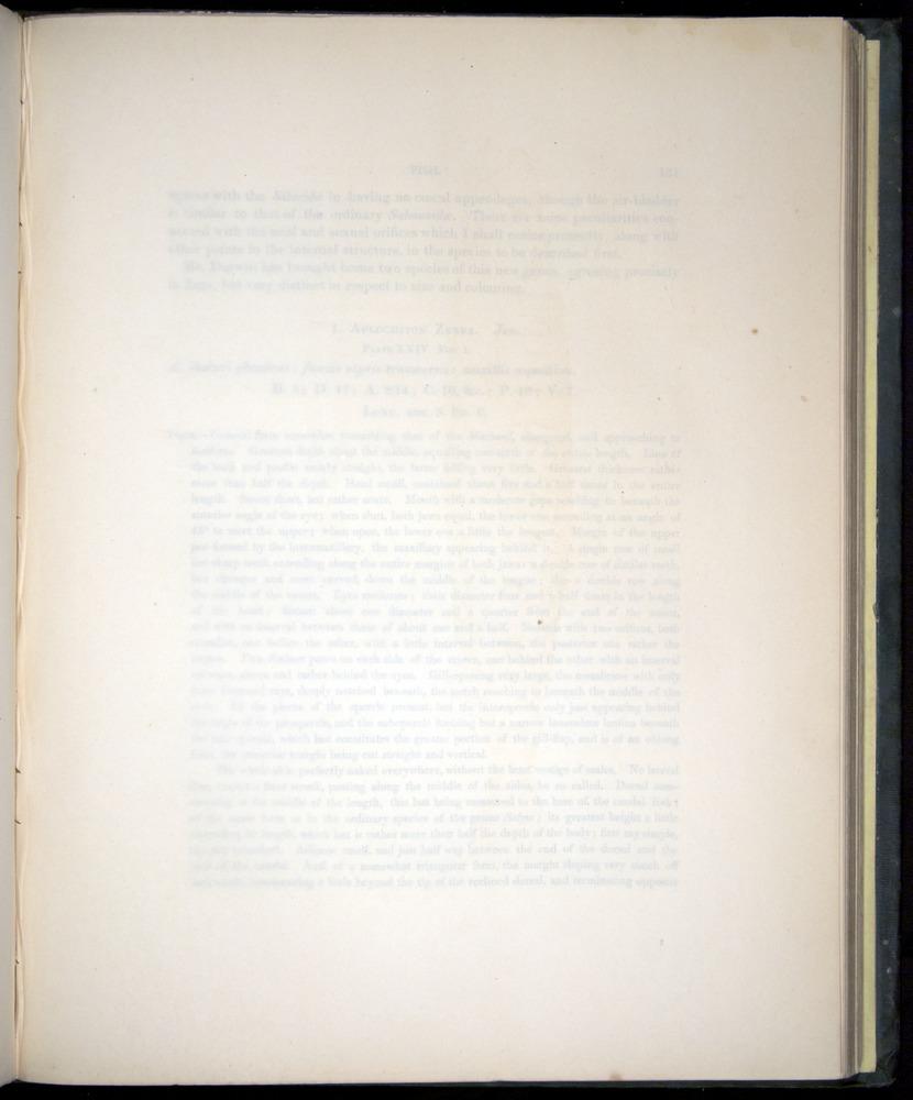 Image of Darwin-F8.3-1838-00130-yf24