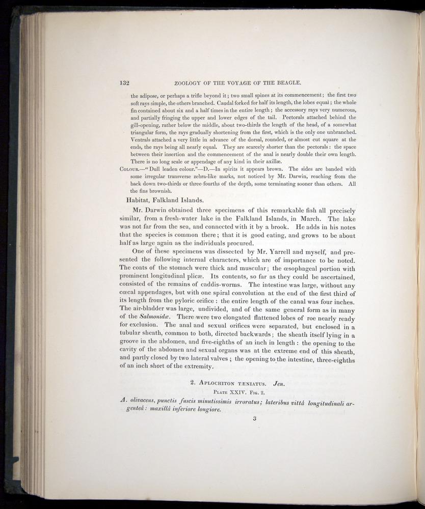 Image of Darwin-F8.3-1838-00132